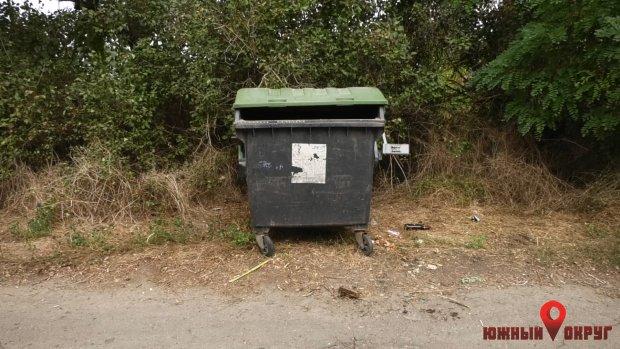 В Сычавке Южненской ОТГ возникли проблемы с вывозом мусора (фото)